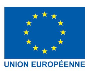 Logo l'Europe en France